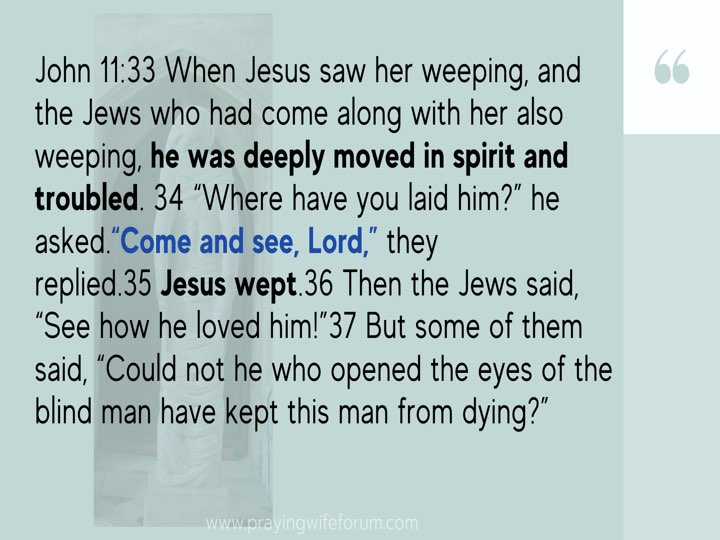 Lazarus, Come Out images bible study .014