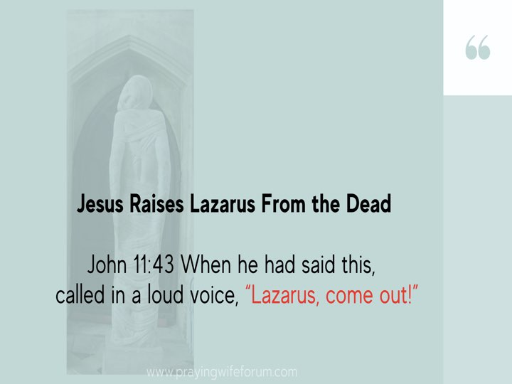 Lazarus, Come Out images bible study .019